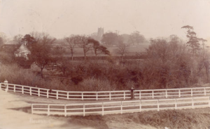 AOS P 1238 Pinchbeck Footbridge over and village 1910