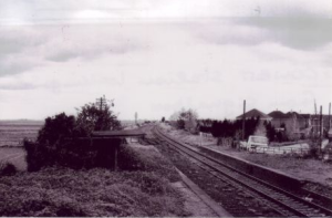 Photo of Cowbit railway station looking South from the signalbox. Ayscoughfee hall collection   Date: 6 May 1984  Photographer/Copyright: Barry Butler, Peterborough