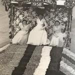Hansontulipland1958
