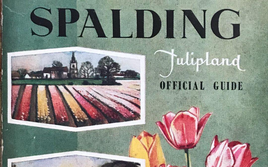 Spalding Tulipland 1960 ish