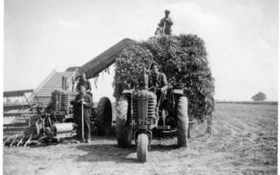 When the men worked the fields all their lives