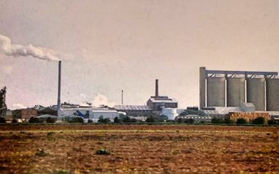 British Sugar plc Spalding 1925 – 1994 – Origins